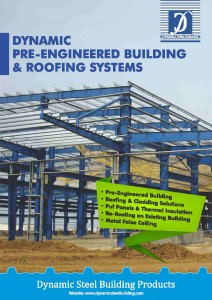 Dynamic-Steel-Building-brochure